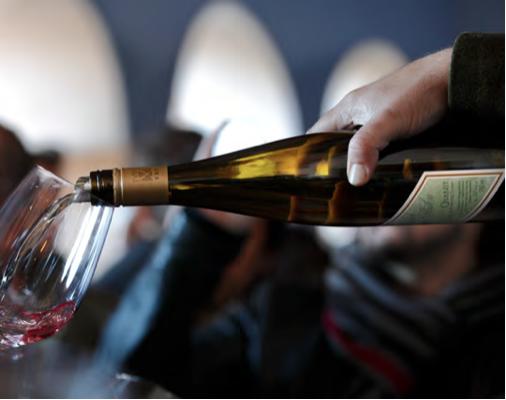 Especial vinos y bodegas singulares IV