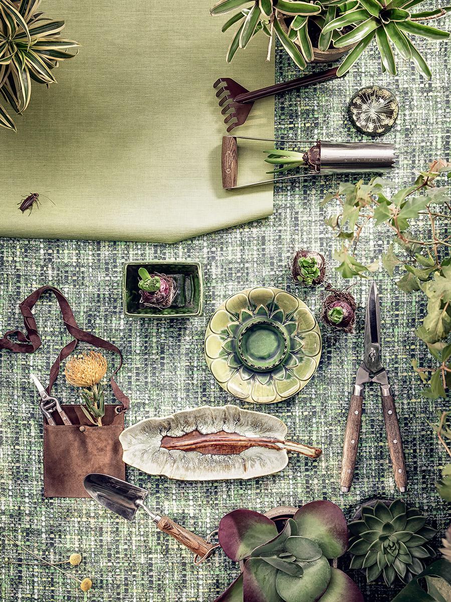 Lecciones de jardinería barbuda